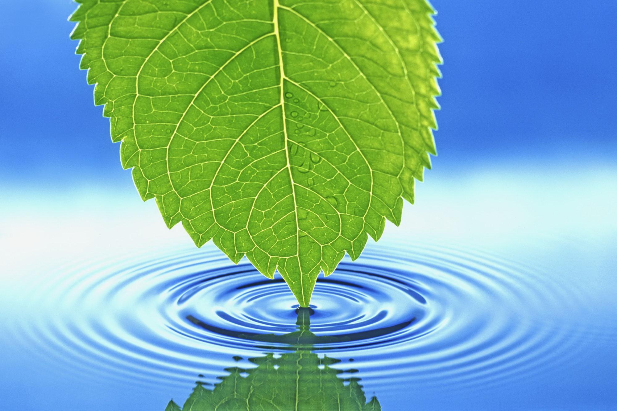 Cool Nature Desktop Backgrounds | Desktop Backgrounds