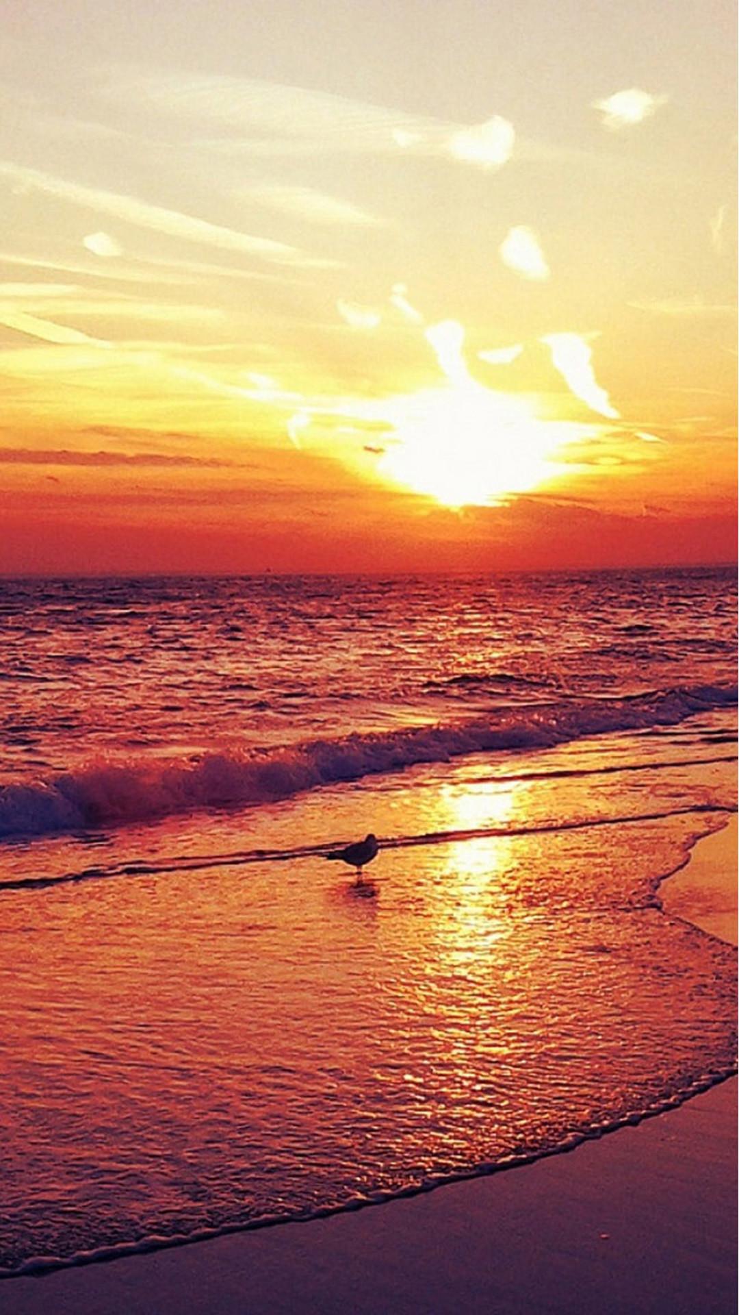 Nature-Sunset-Beach-Landscape-iphone-6-wallpaper-www.