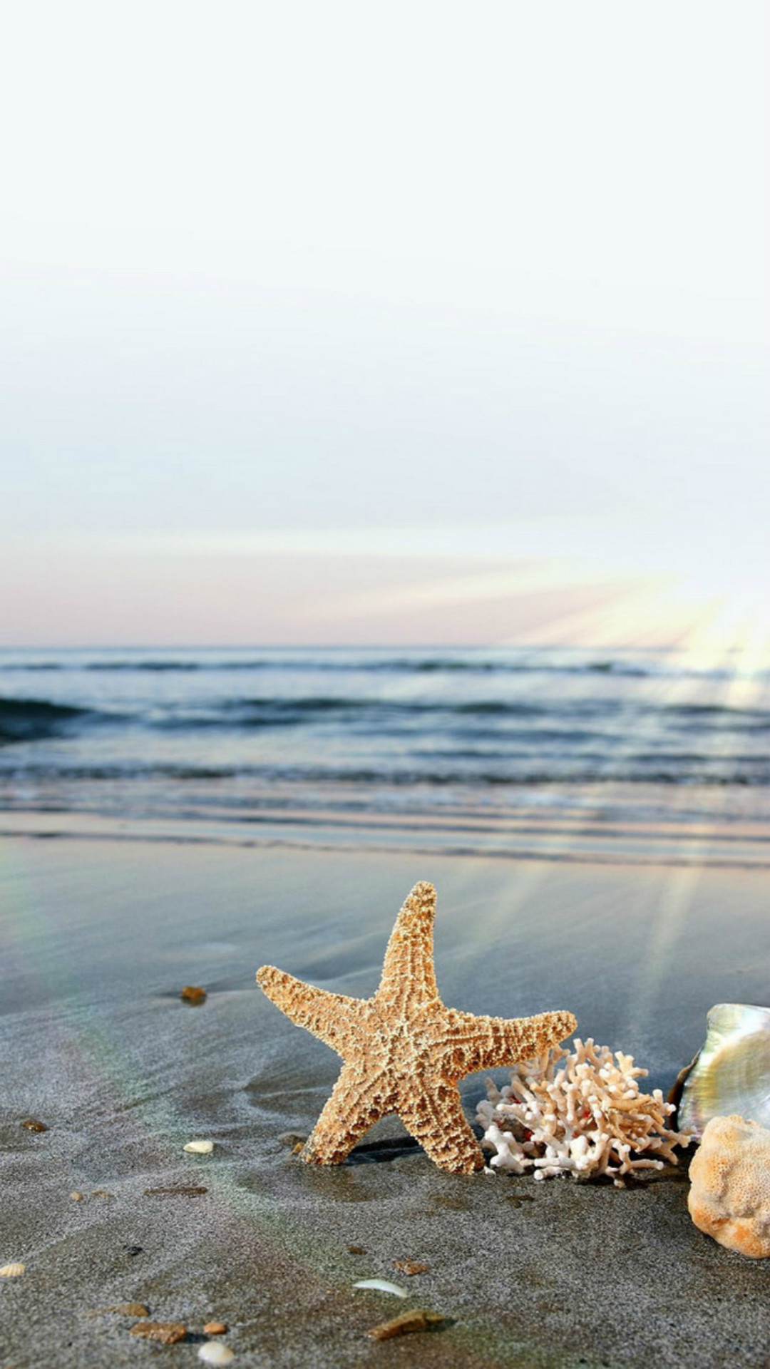 Starfish Sun Waves Beach #iPhone #6 #plus #wallpaper