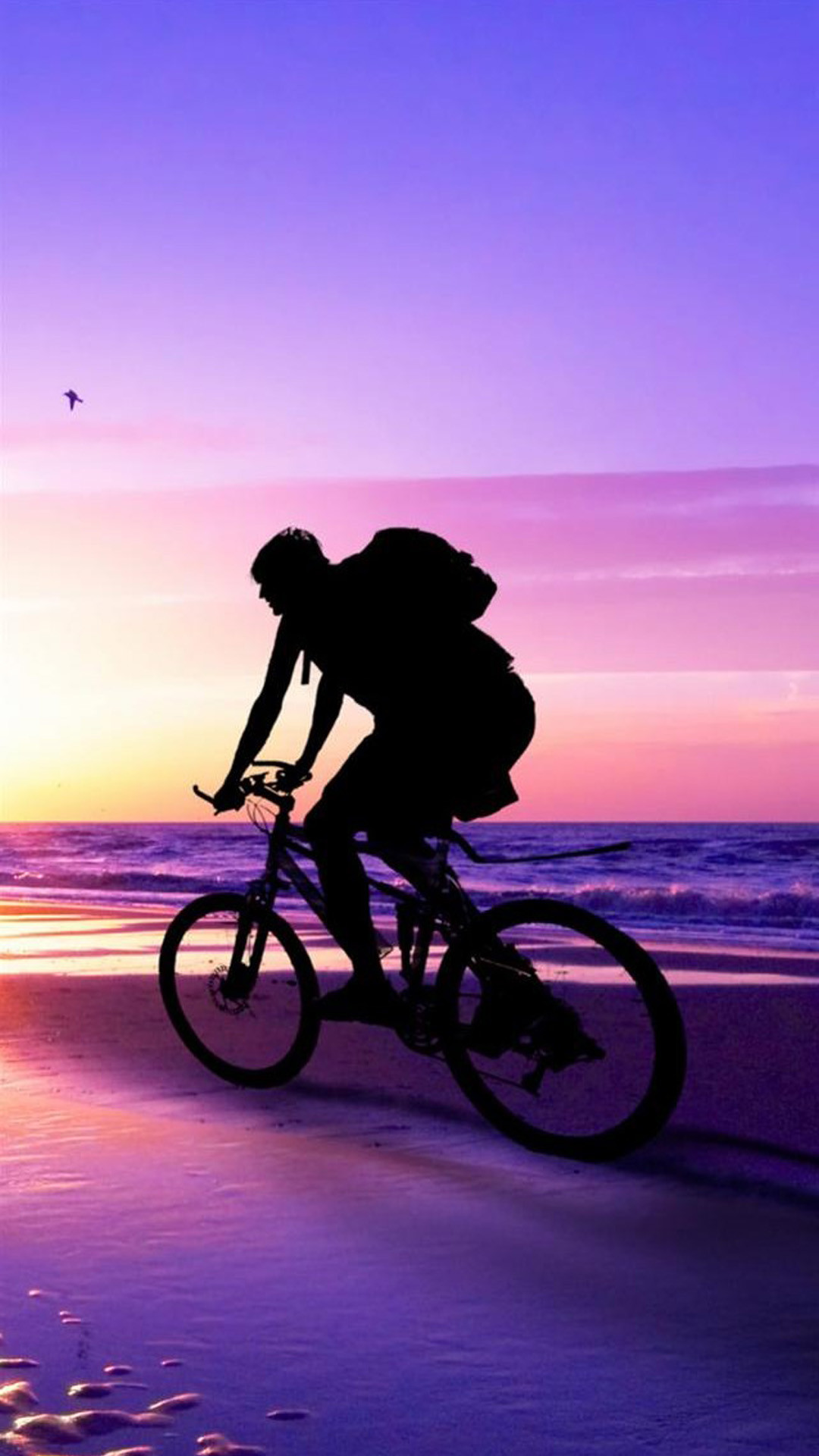 Beach Sunset Bicycle Ride iPhone 6 Plus hd Wallpaper