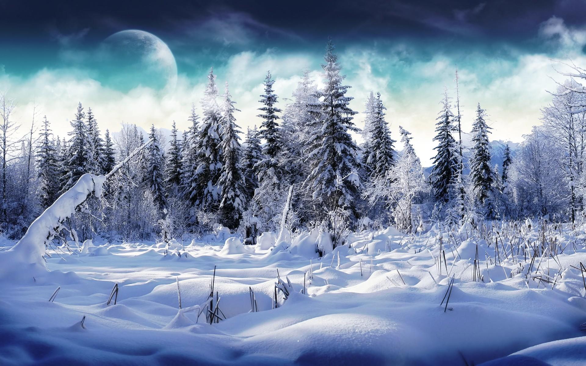 Winter Wallpaper 20