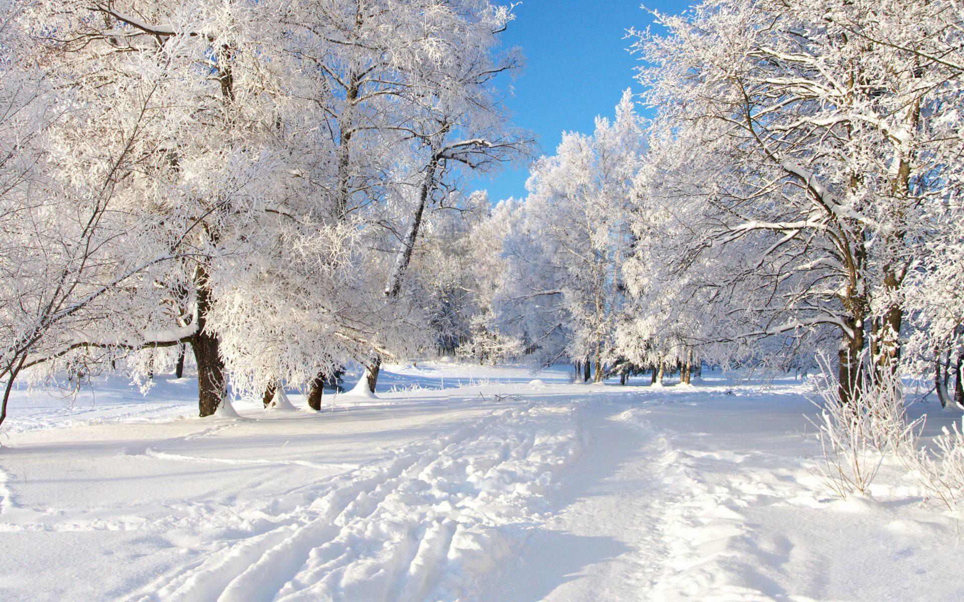 Free Winter Desktop Wallpaper, Download Winter Wallpapers