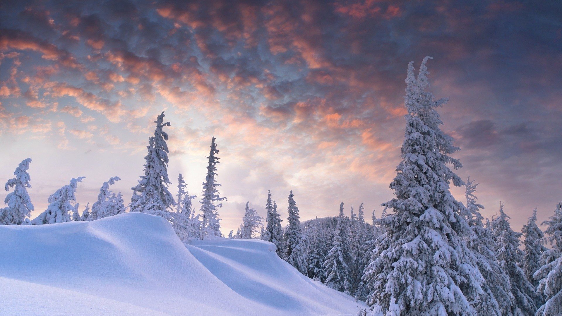 Winter and Snow Wallpaper Free Download.