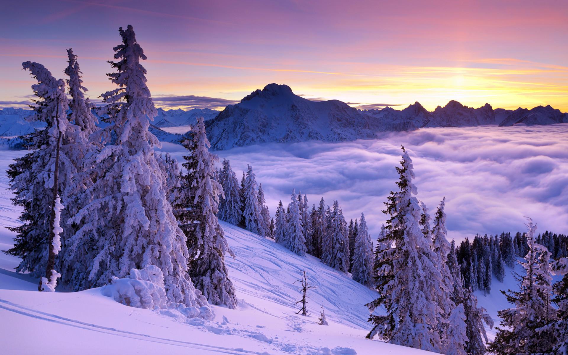 Purple Winter Sunset Wallpapers | HD Wallpapers