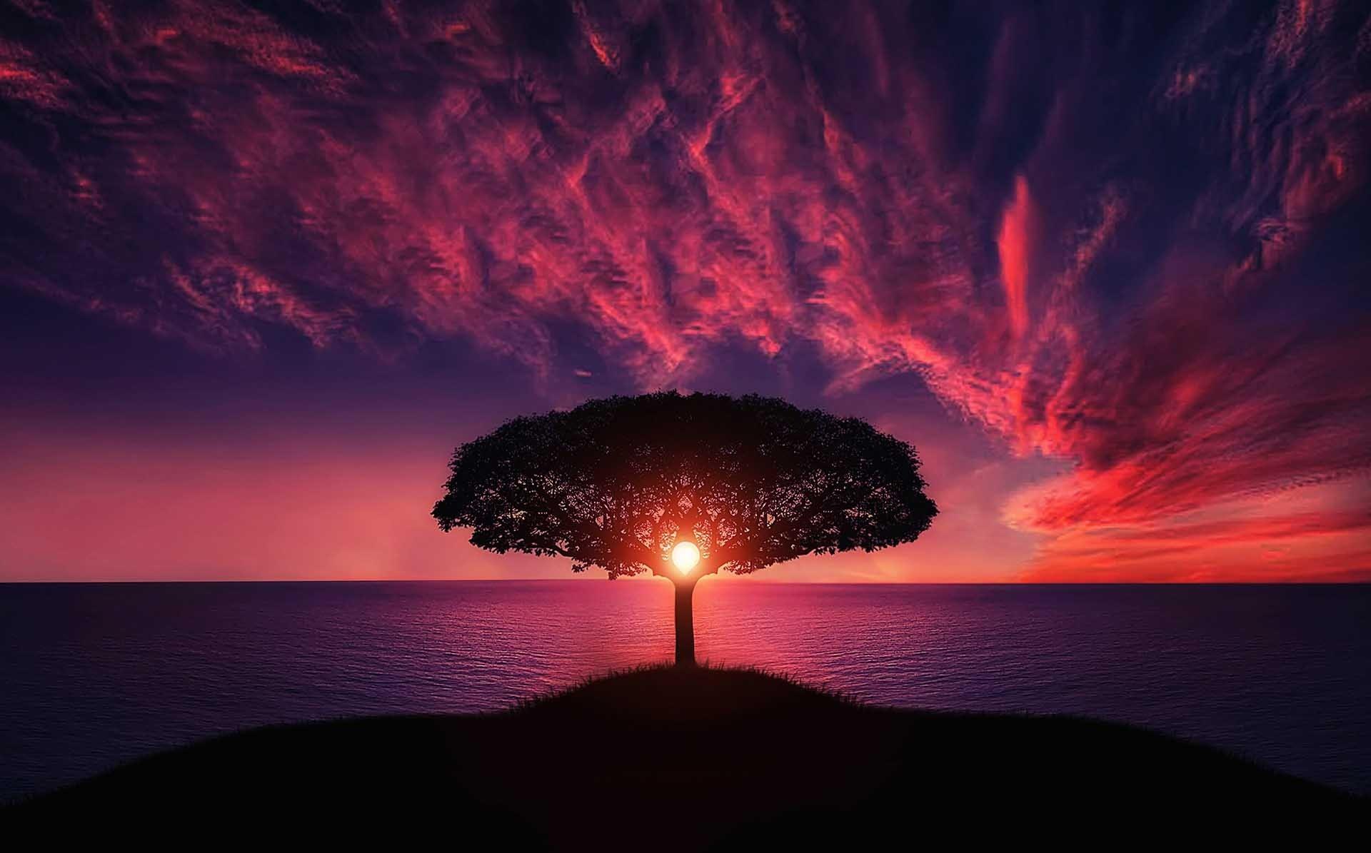 Nature wallpaper of landscape, nature, sky, sunset
