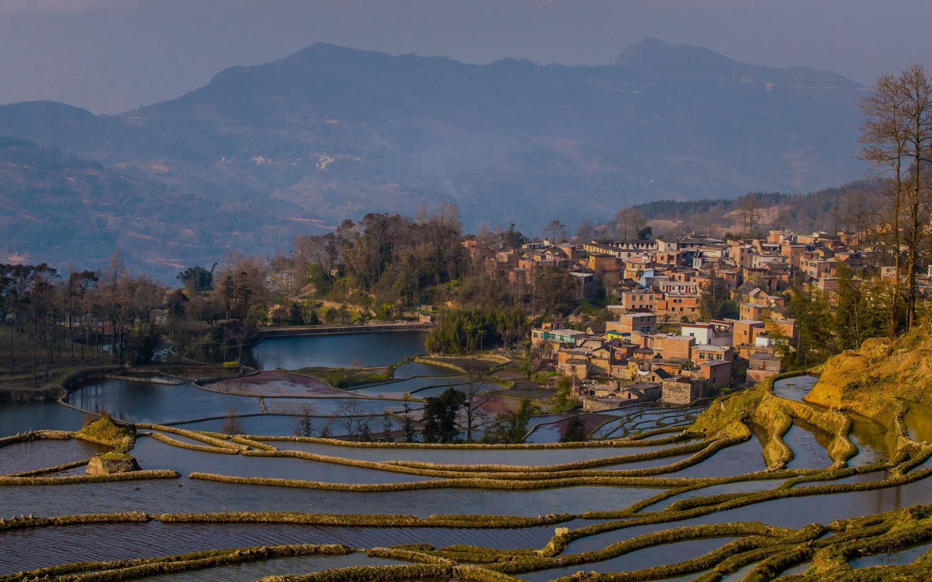 Previous: Hani Rice Terraces Vietnam …