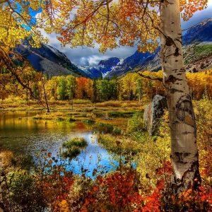 HD Fall Mountain
