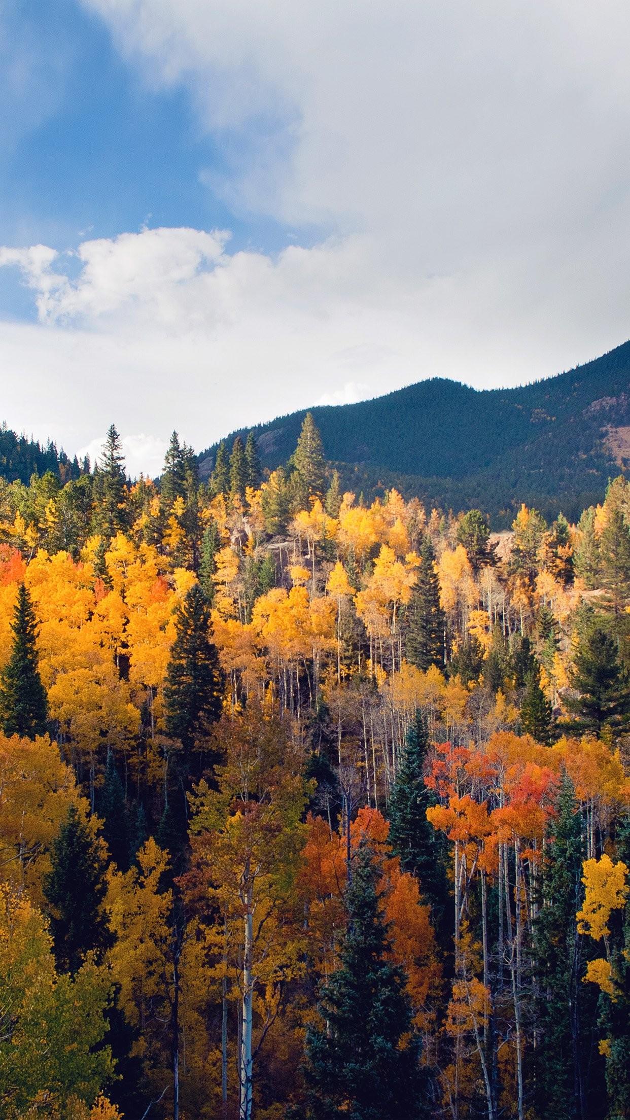 Autumn Splendor. [Desktop wallpaper 1440×900] | Landscape Desktop Wp's |  Pinterest