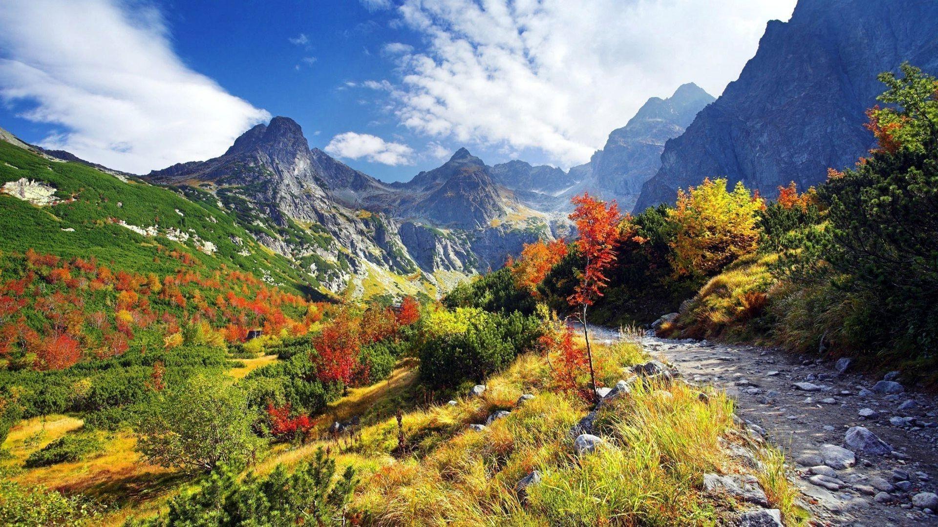 Autumn Mountain Wallpaper Mobile For Free Wallpaper