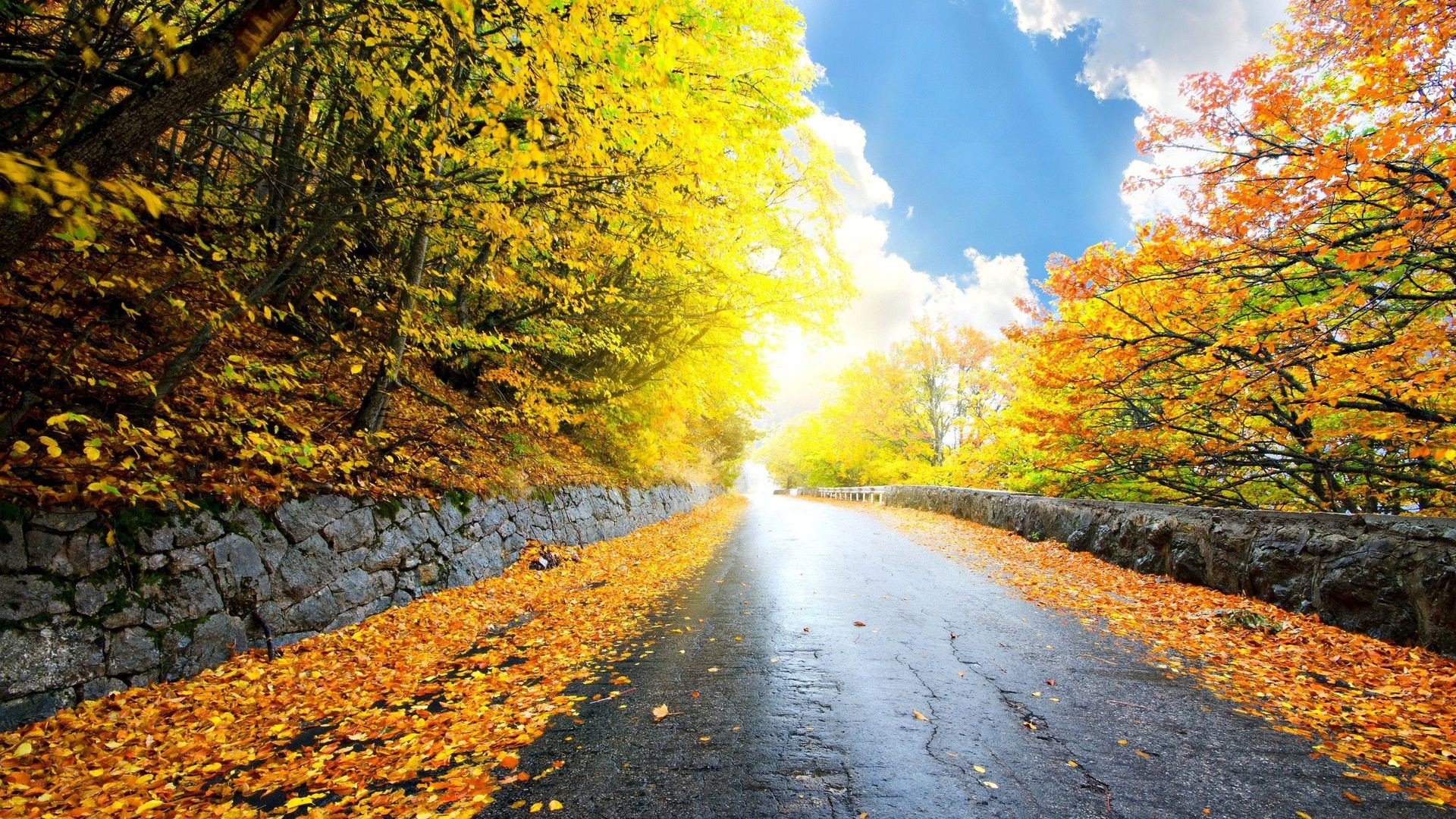 Road in the autumn mountains HD Wallpaper Road …