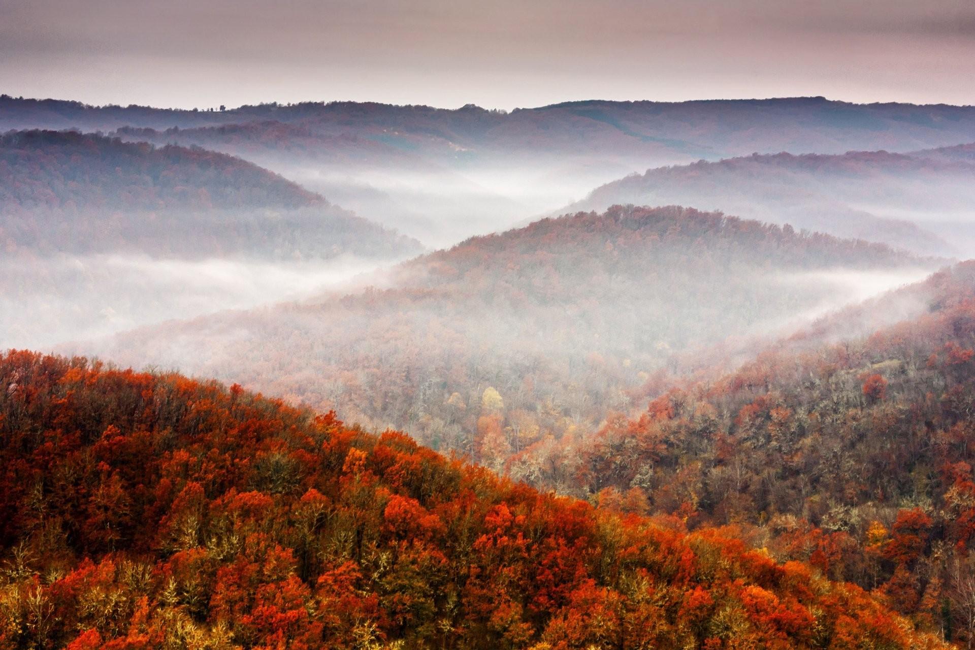 nature fall mountains tree sky foliage nature autumn mountain forest sky  foliage