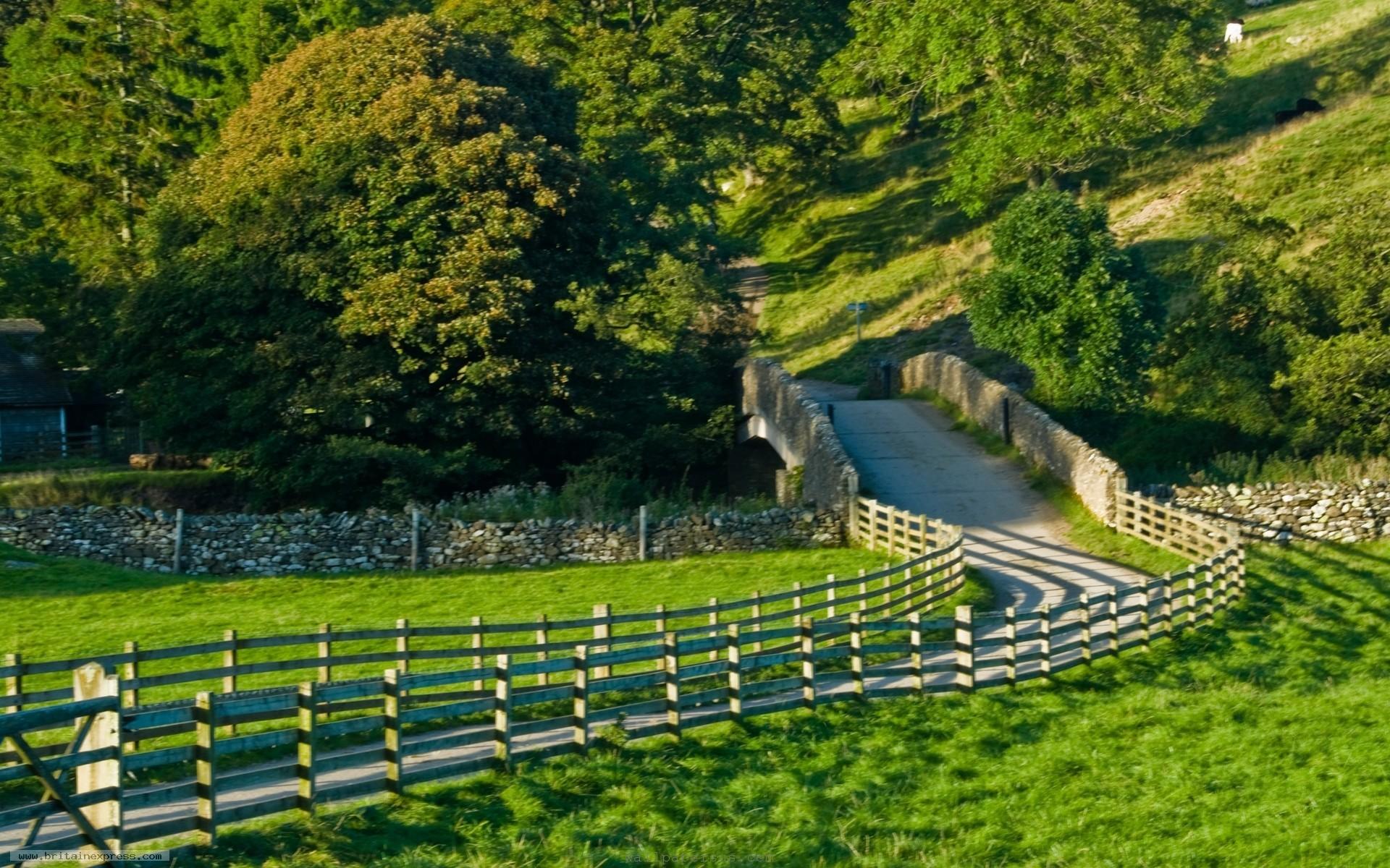Scenic Roads Wallpaper | scenic, wallpaper, desktop, Landscape wallpapers