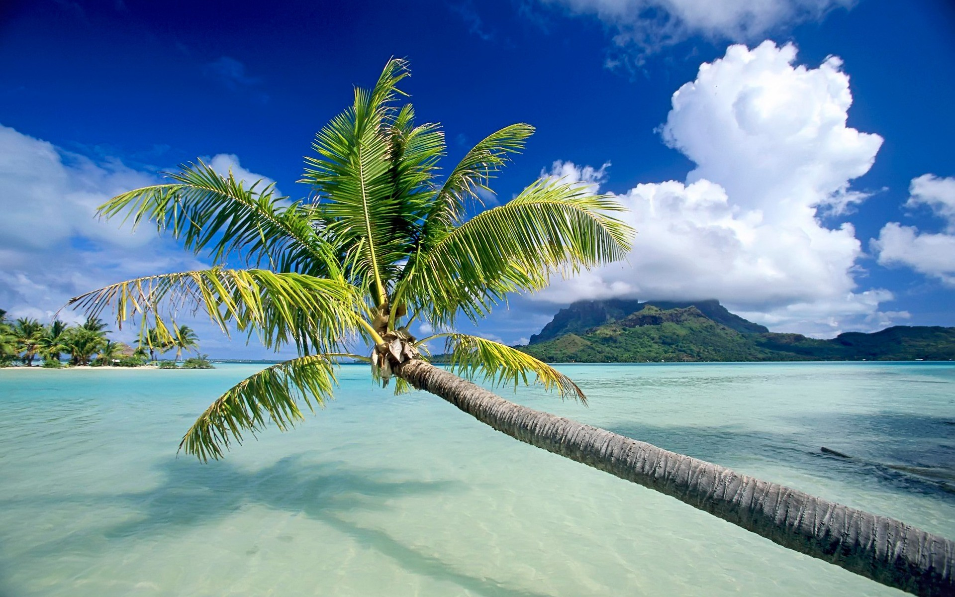 30 HD Tropical Beach Backgrounds #7256