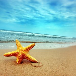 Beach Images for Backgrounds