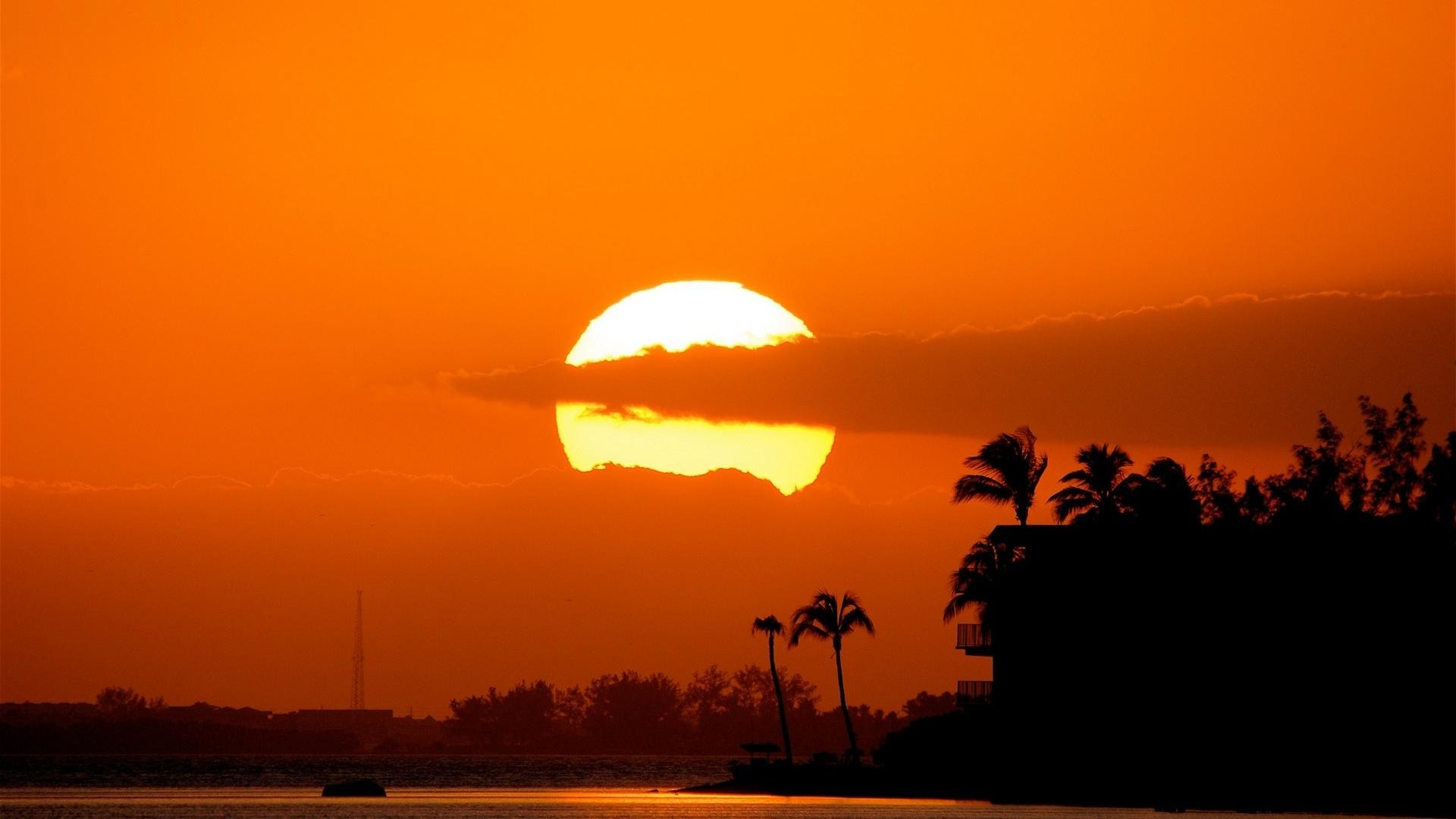 The Wild Sunset Scenic Backgrounds Widescreen and HD background .
