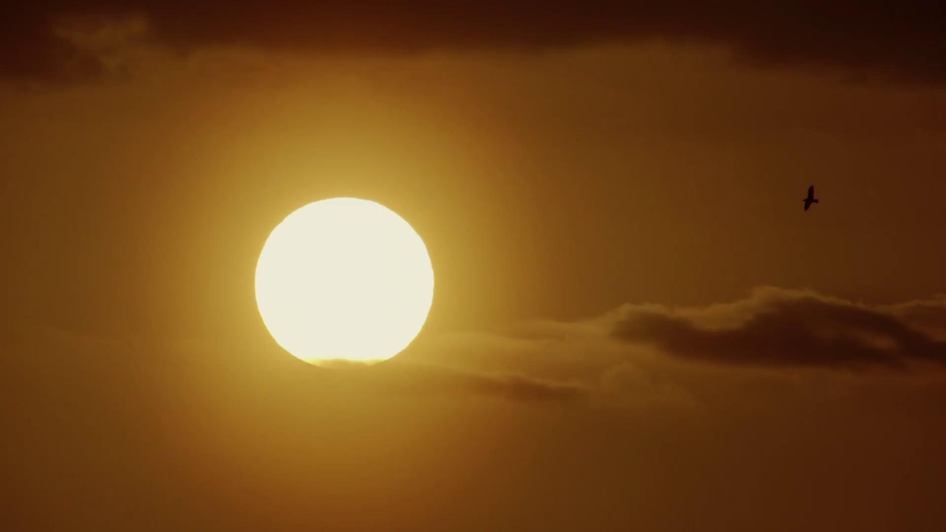 Subscription Library Real time telephoto scenic background of the sun  slowly moving through the beautiful summer sunset sky