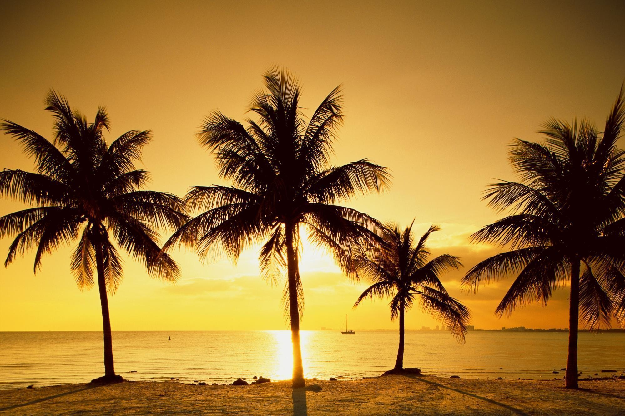 Autumn <b>Sunset Scenery Backgrounds</b> For <b>Desktop