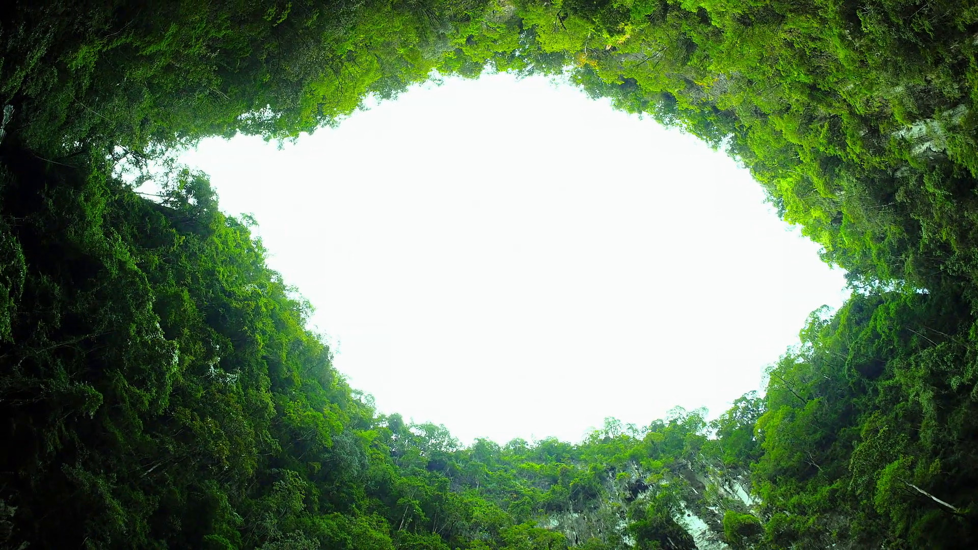 Impressive karst mountain lagoon hidden in jungle. Scenic nature background  Stock Video Footage – VideoBlocks