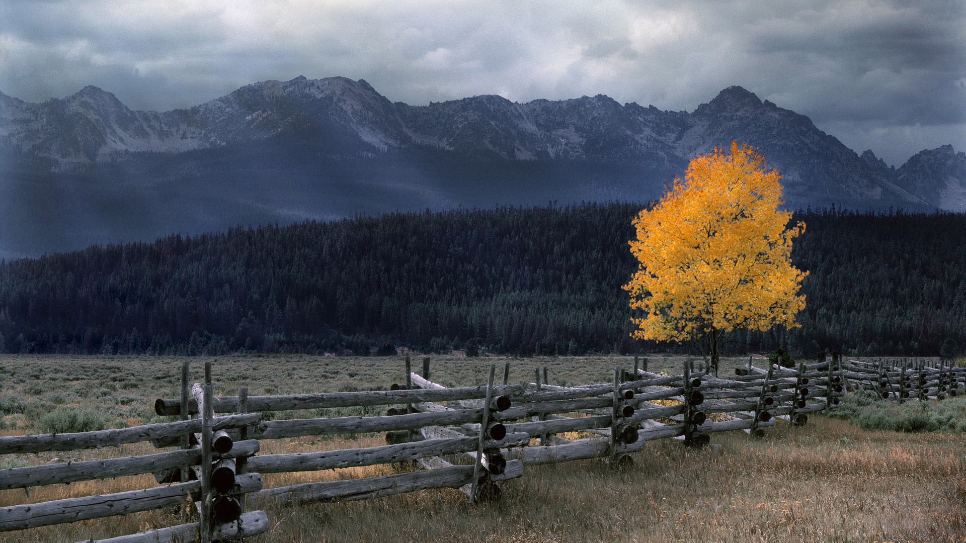 Free scenic wallpaper background