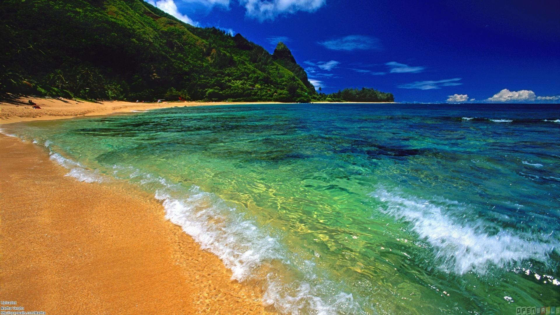 Hawaii Beach Island Hd Wallpaper Beraplancom 1920x1080px