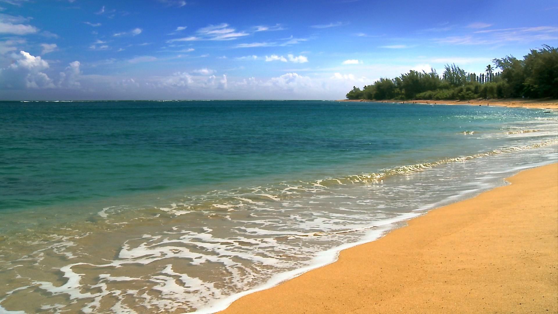 Hawaii Five Cities Beach HD Desktop Wallpaper