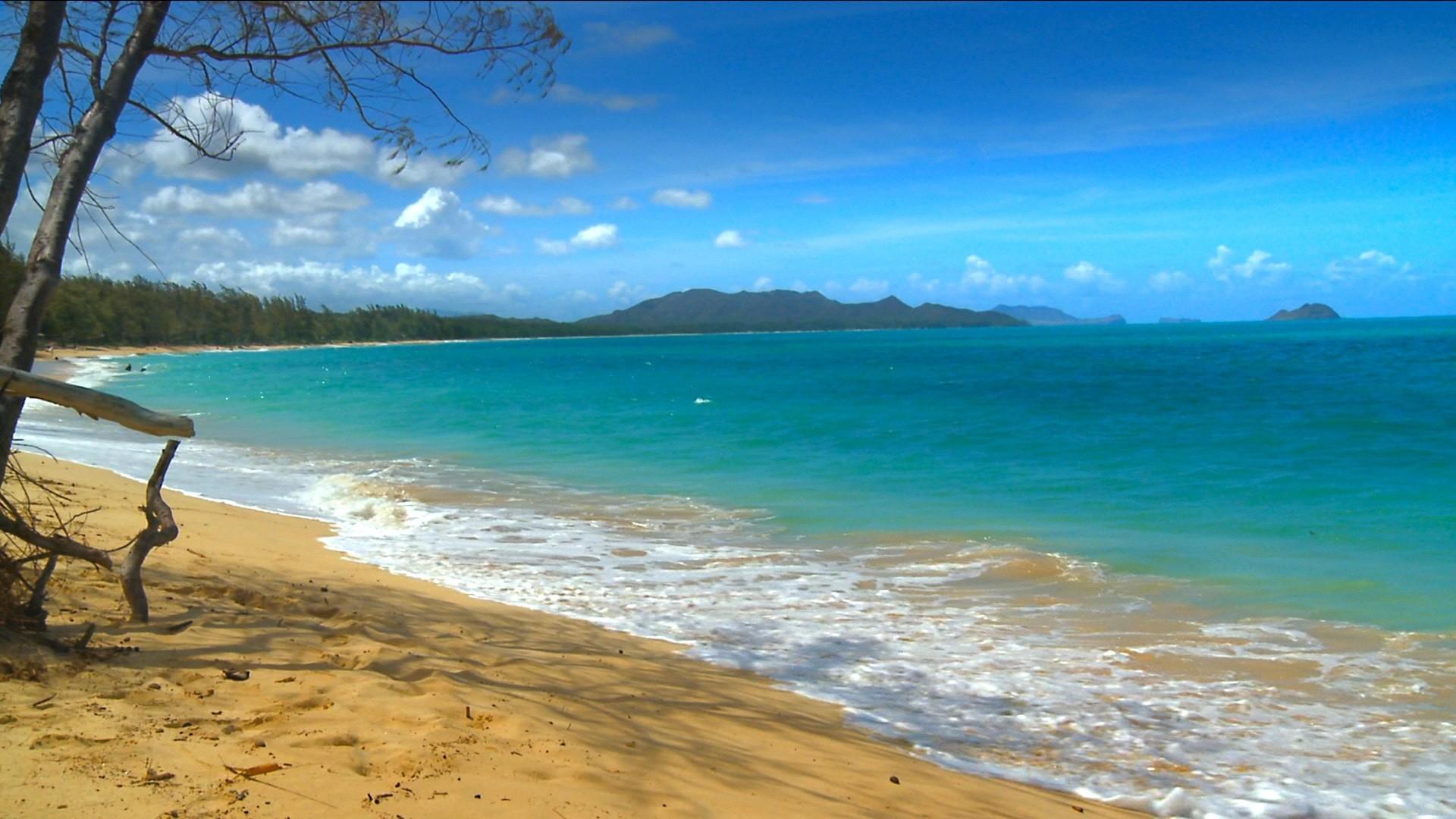 Wallpaper Hawaii Beach WallpaperSafari