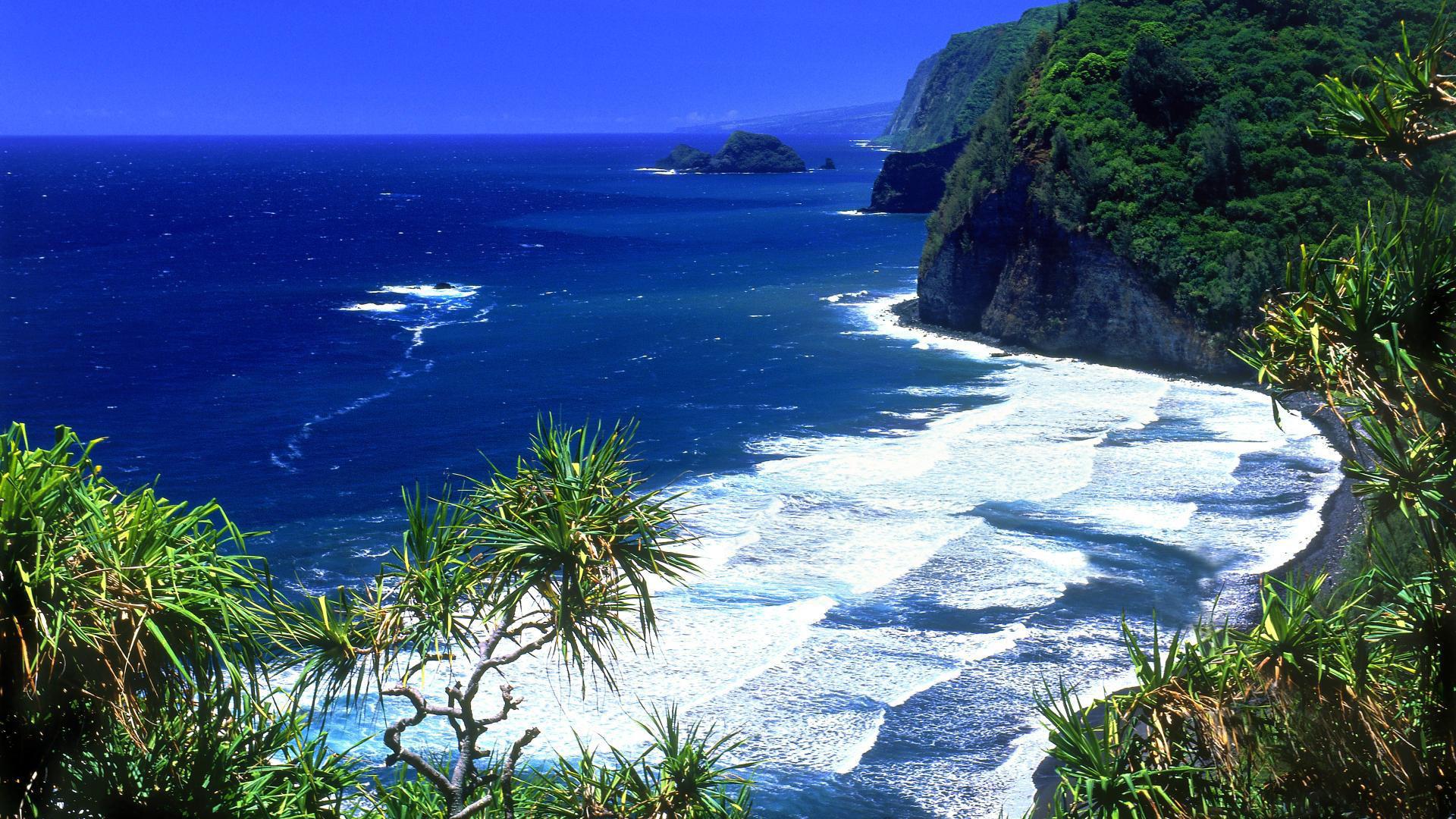 Hawaiian Beach HD Wallpaper