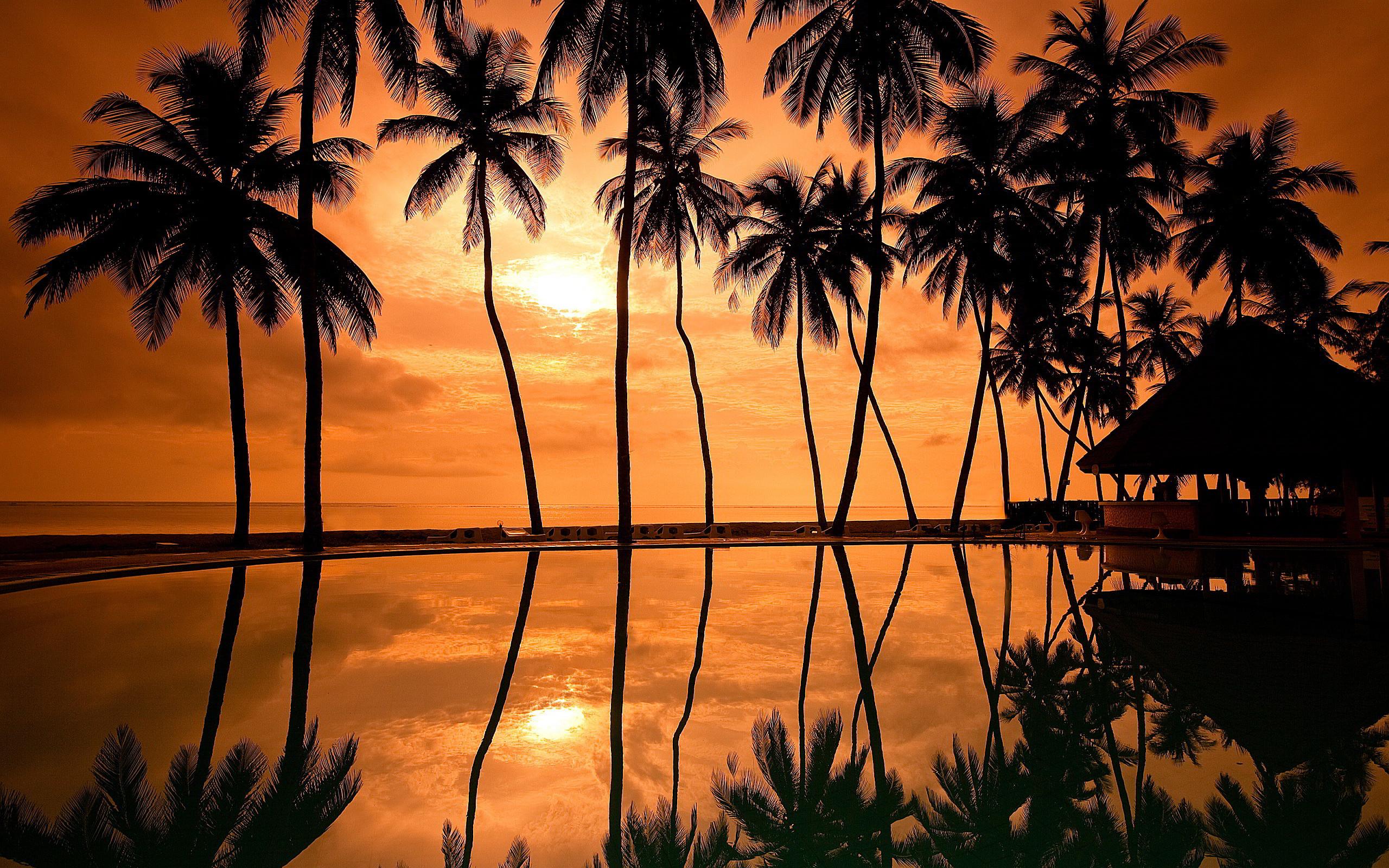 Sunset Hawaii Beach Wallpaper