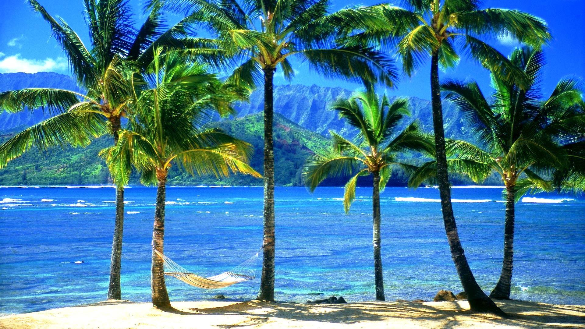 … Hawaiian Desktop Wallpaper Hawaii Beach The Excitement To Set The  Hawaiian Desktop Wallpaper …