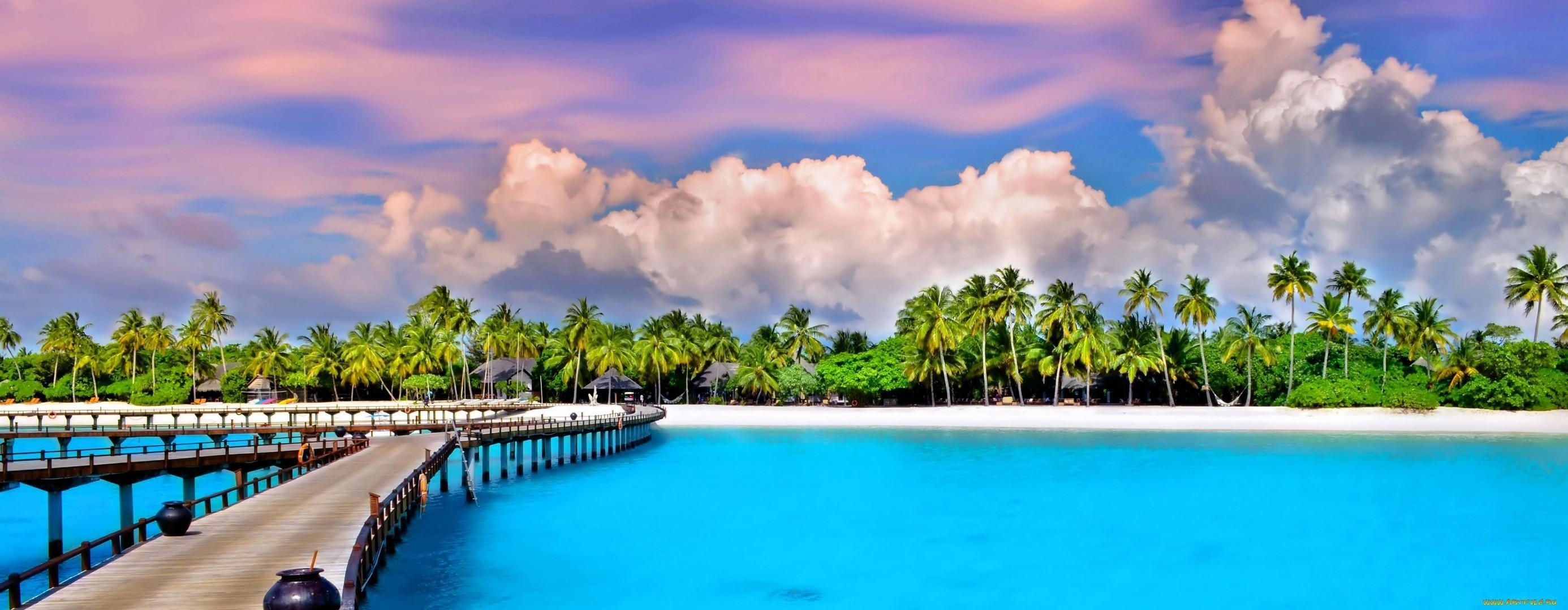 Tropical Wallpaper HD