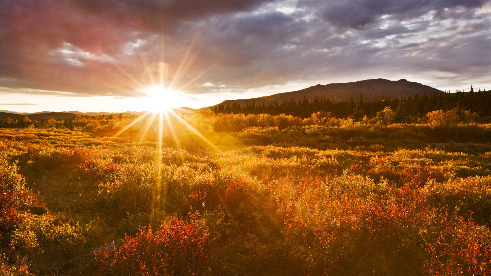 Sunrise Wallpaper Free Download HD – HD Wallpaperia