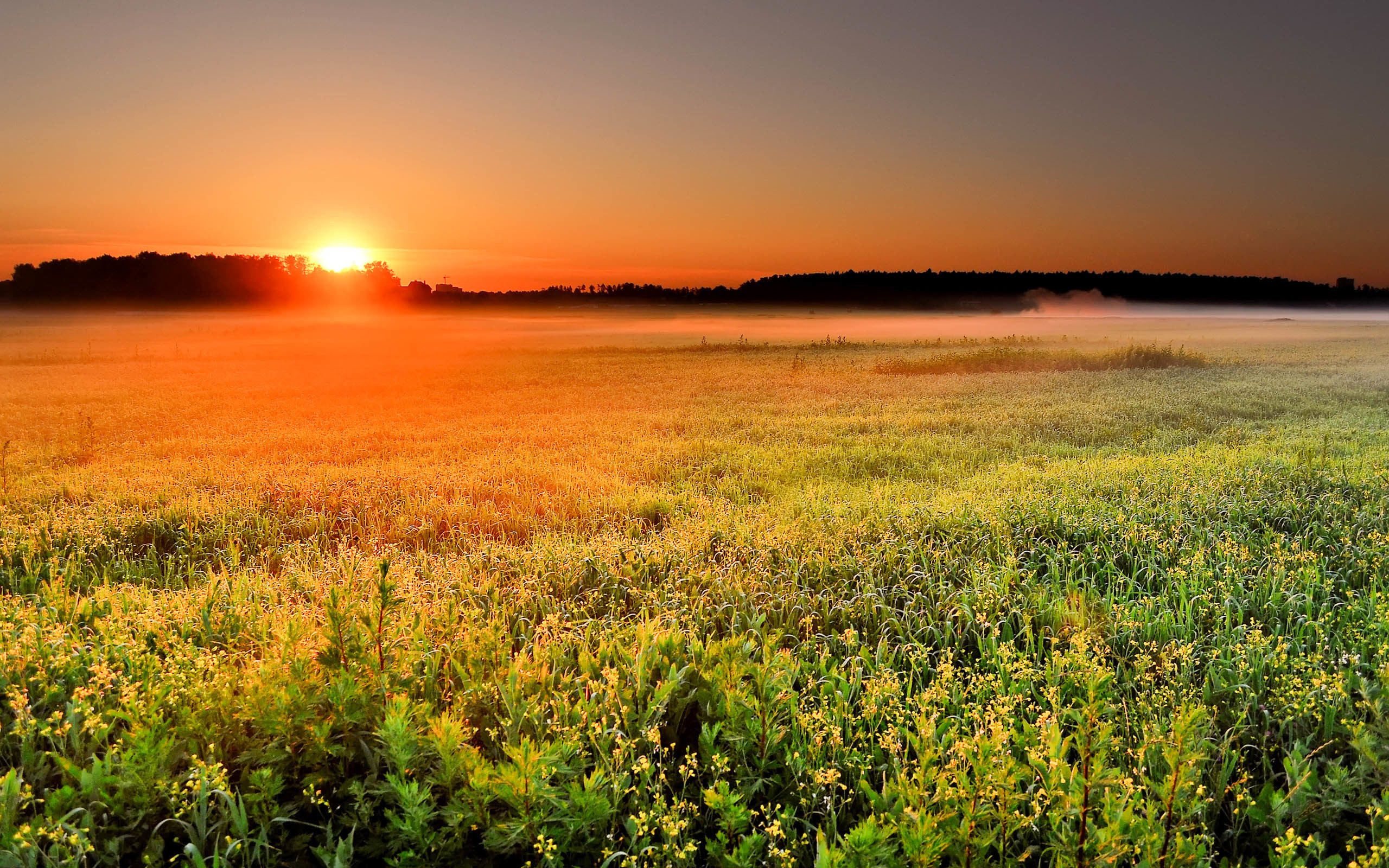 Beautiful Sunrise Wallpapers 2015 (High Definition) …