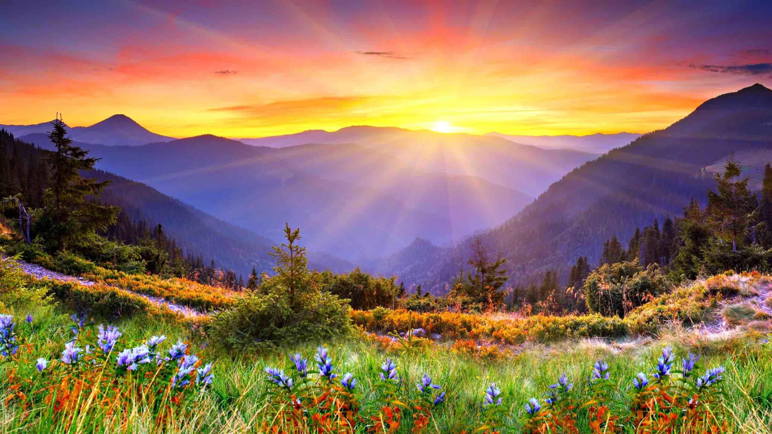 beautiful-sunrise-wallpaper-34171-34940-hd-wallpapers
