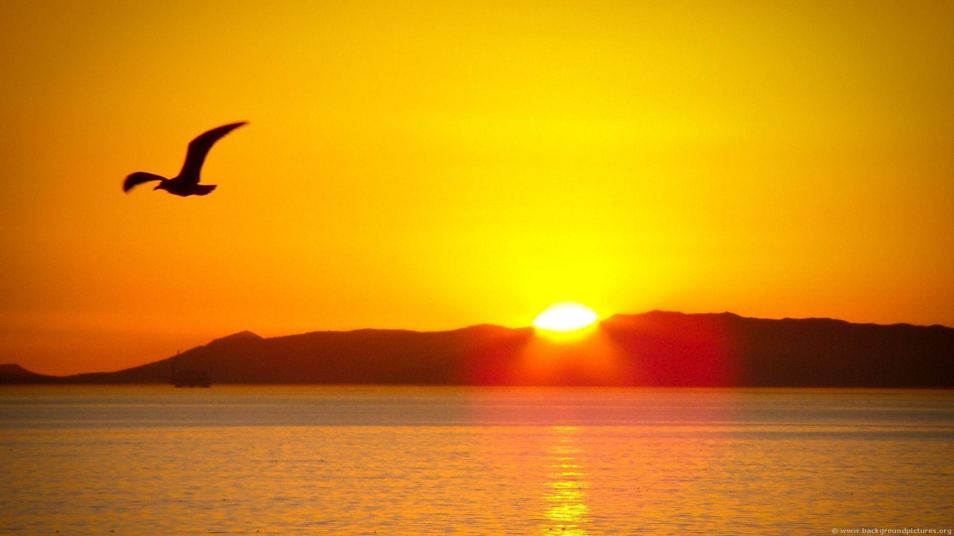 Beautiful <b>Sunrise Wallpaper</b> – WallpaperSafari