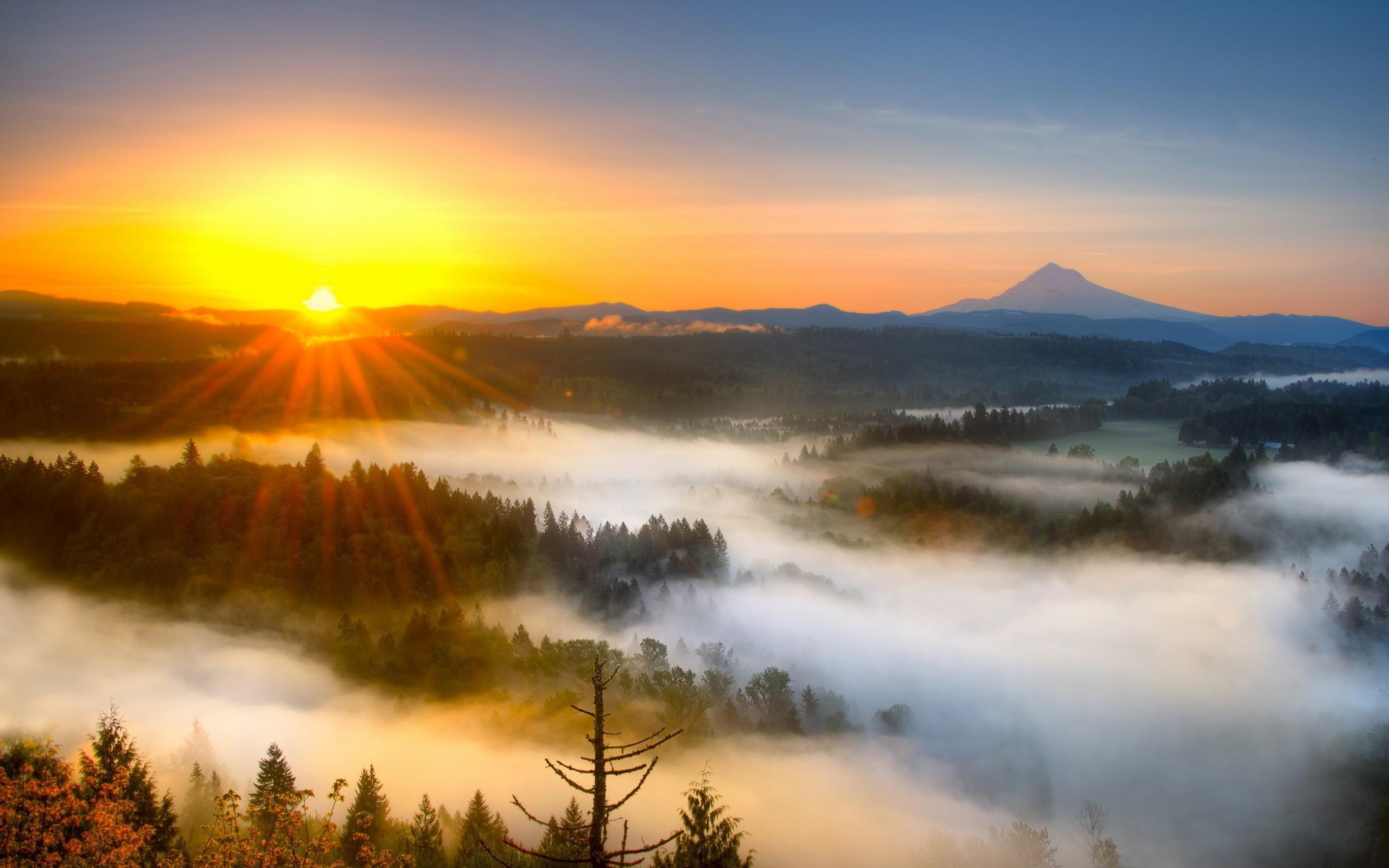 Morning Sunrise | Morning mist mountain sunrise Wallpaper |  wallpaper download