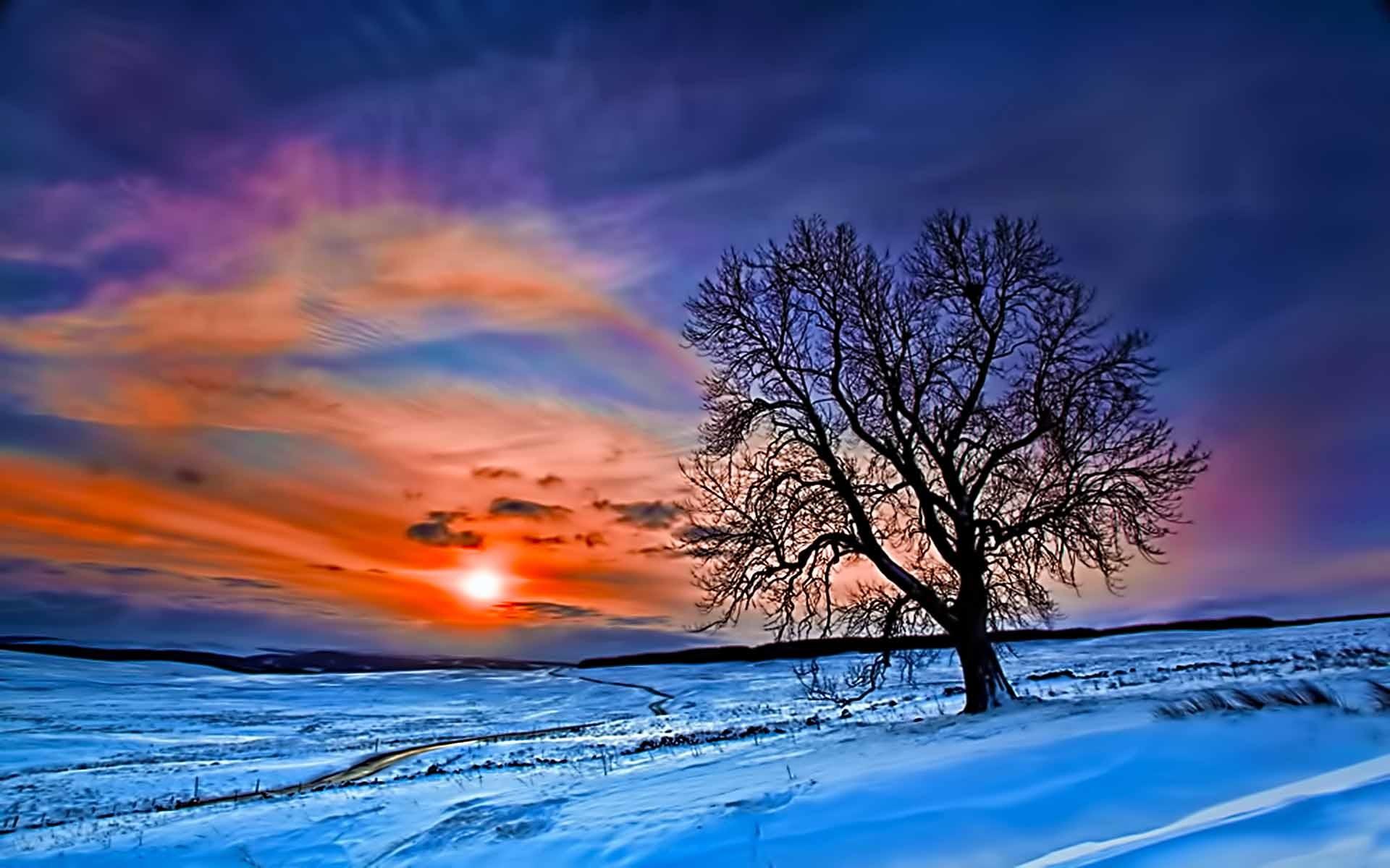 Winter Beautiful Sunrise (id: