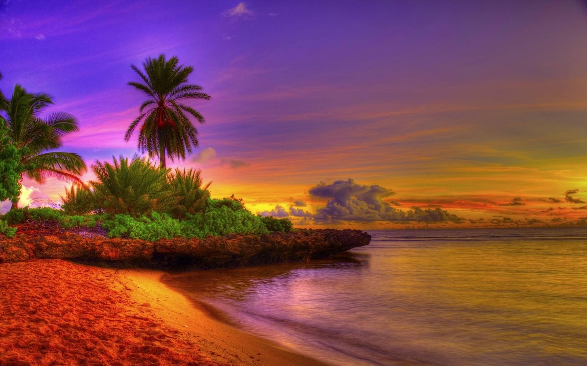 Sunrise Tropical Beach #15592 Wallpaper | Wallpaper hd