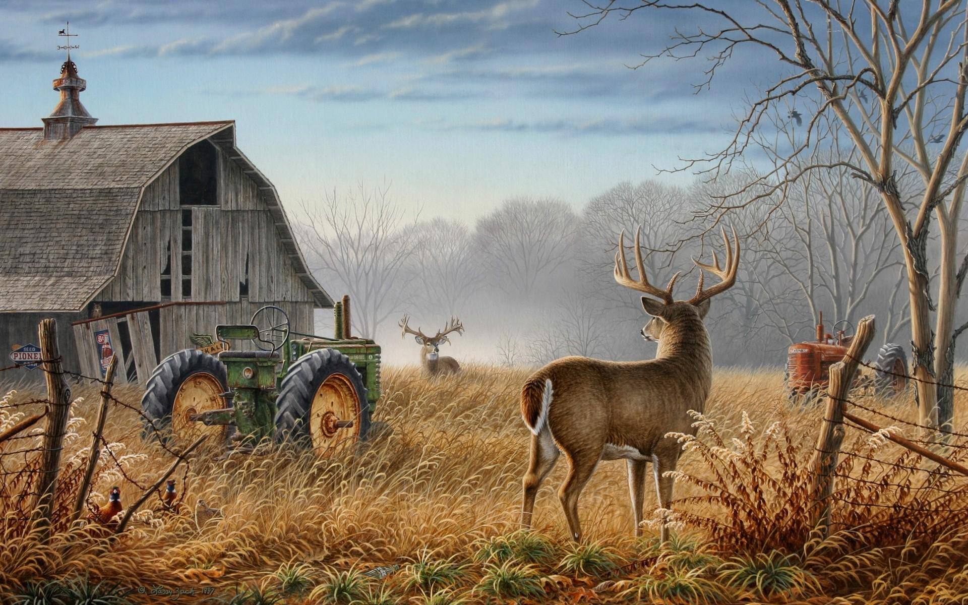 animals, tractors, savers, screen, wallpaper, images