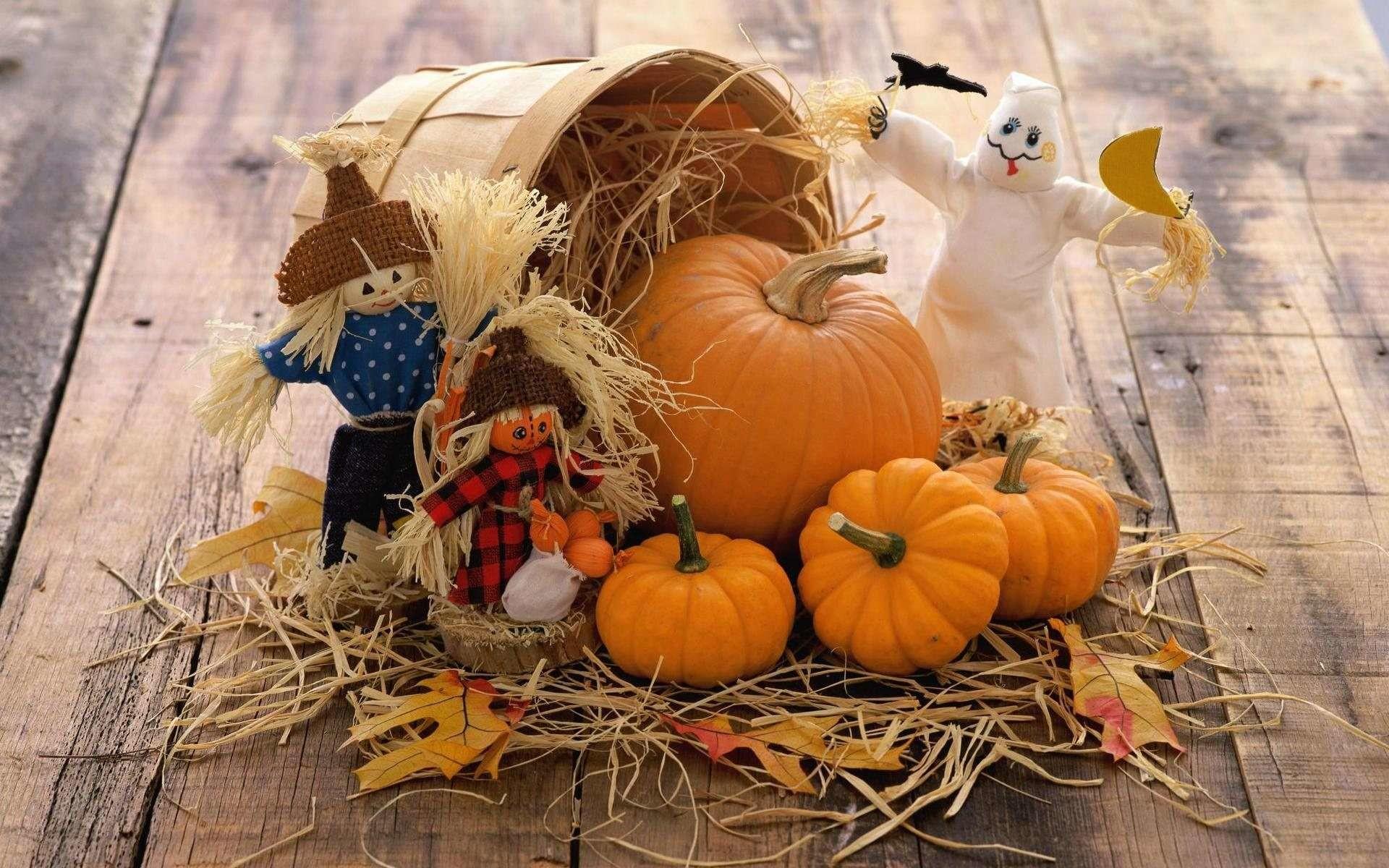 Wallpapers For > Fall Pumpkin Wallpaper