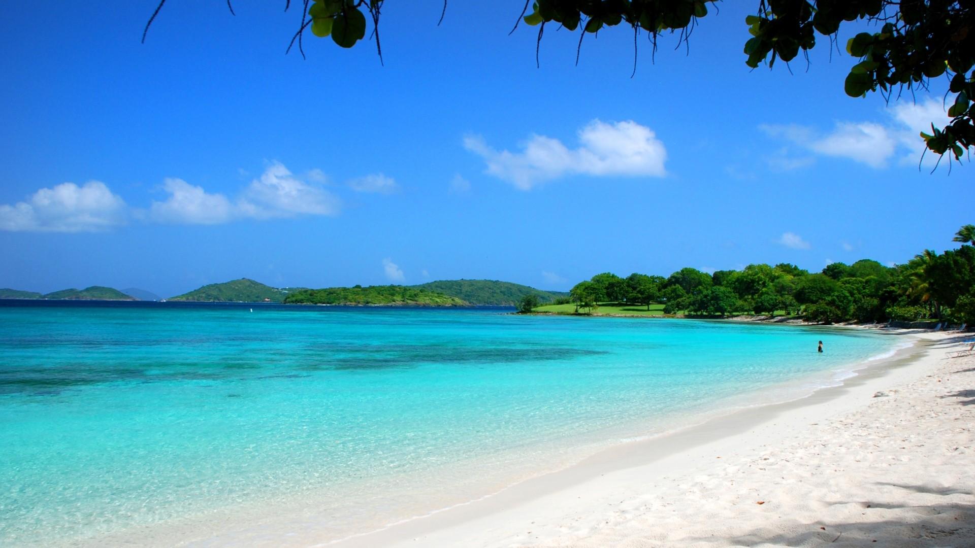 Wallpaper maldives, tropical, beach, sand, summer, palm trees