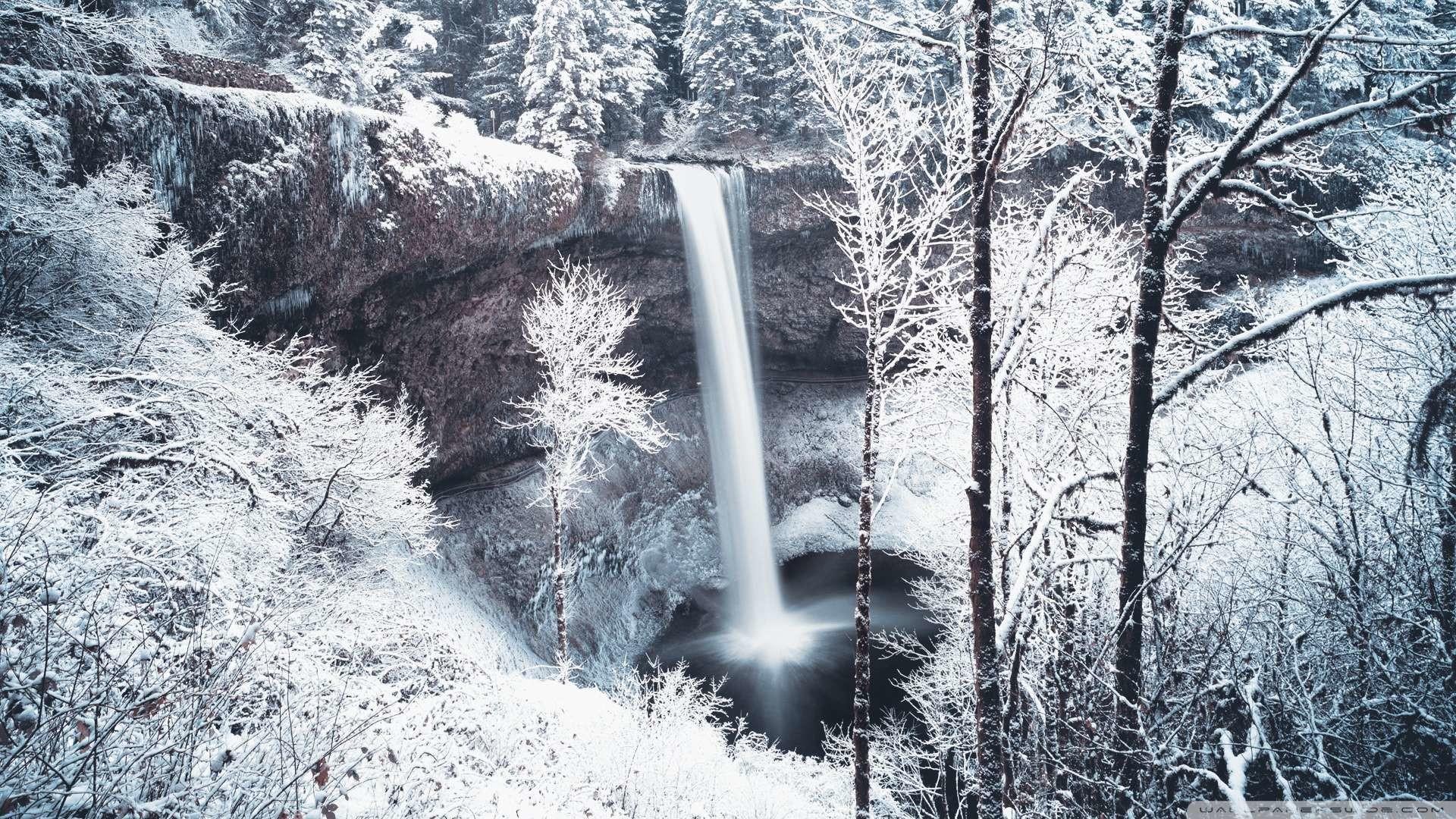 Explore Winter Wallpaper, Free Books, and more!