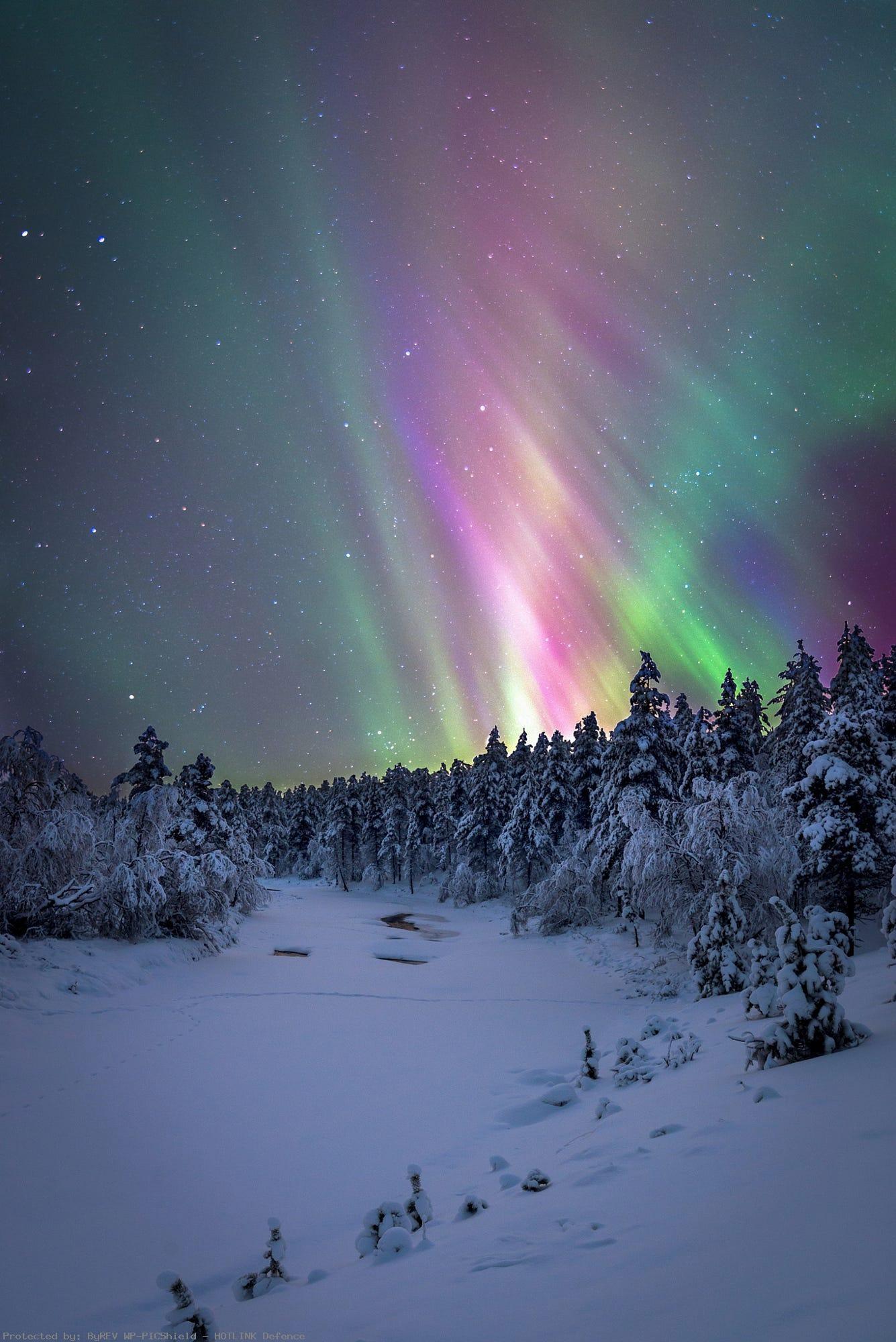 Urho-Kekkonen-National-park-in-far-north-of- · wallpaper-wp4001563