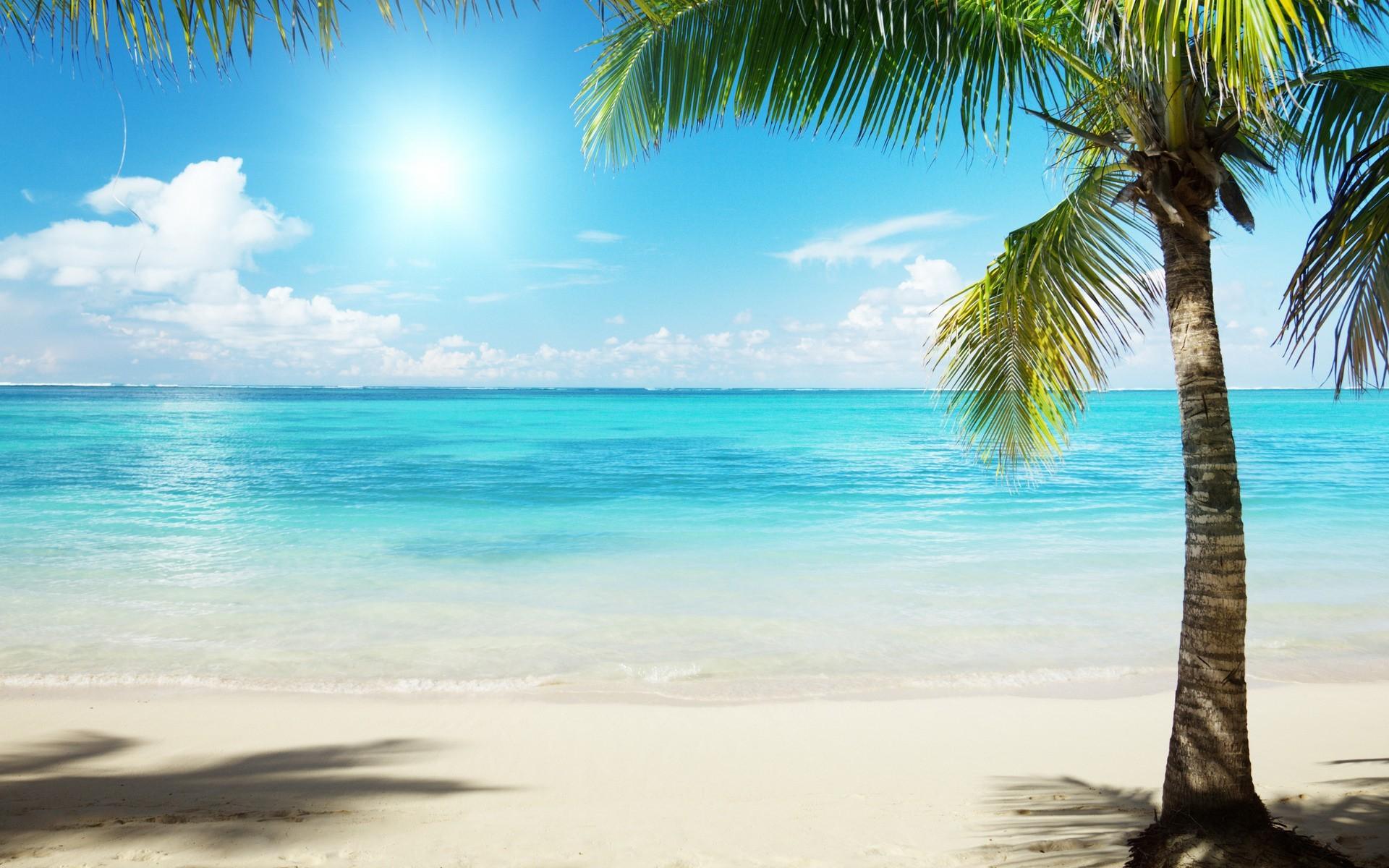 Sunny Day on a Beach