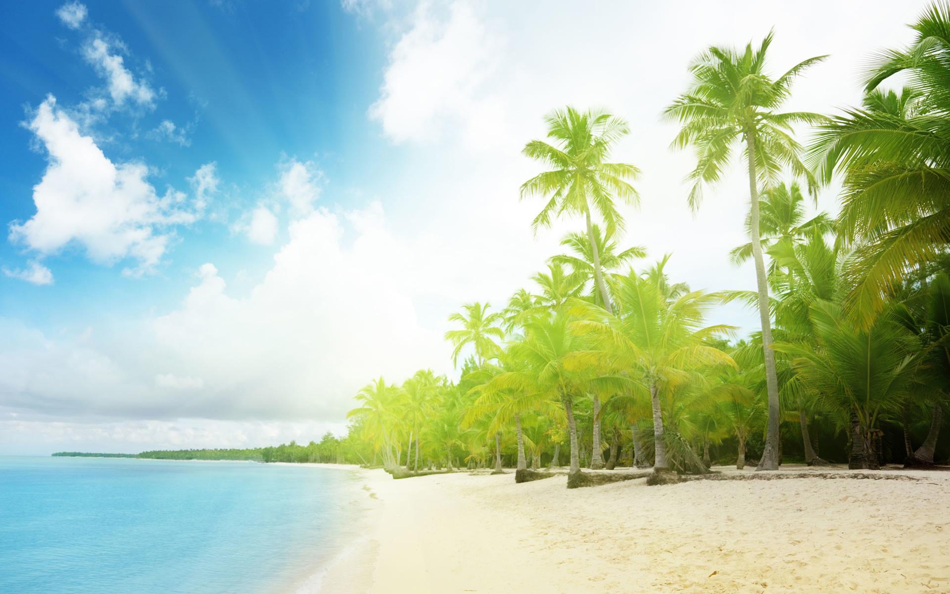 Sunny Beach Wallpaper Background