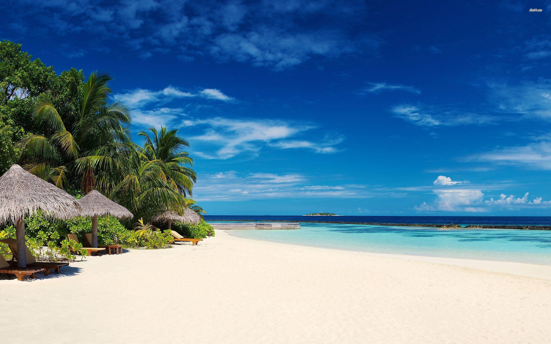 Beach Resort- Wyndham Ocean Palms Resort Pompano ach