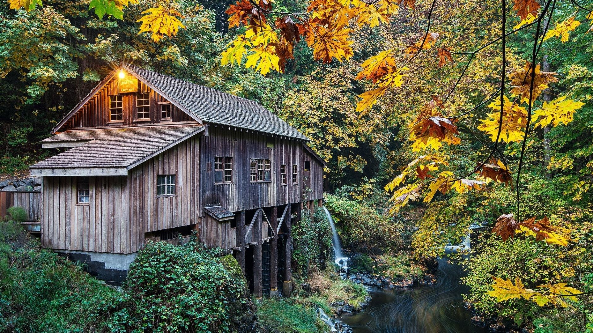 Creek Tag – Mill Woodland Washington Creek Usa Autumn Cedar Grist Nature Hd  Desktop for HD