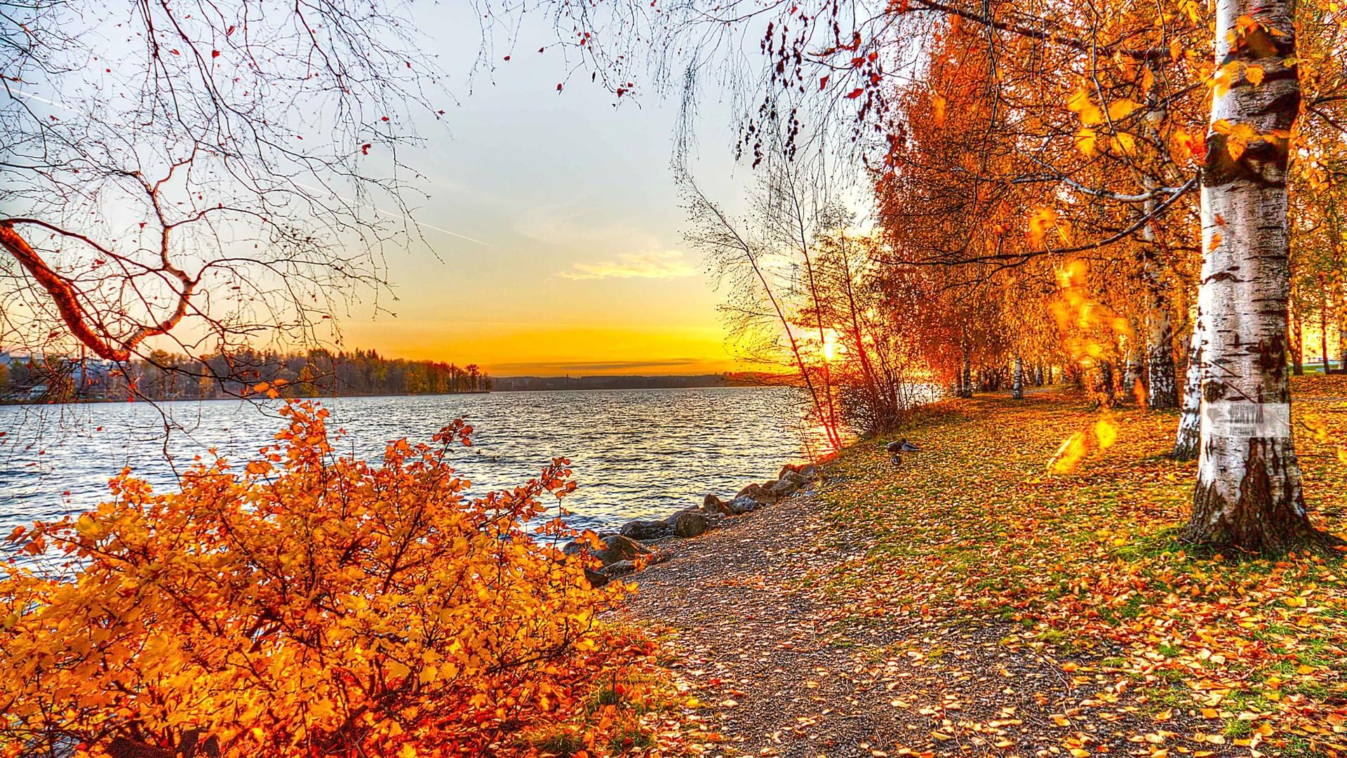 Autumn Landscape Wallpaper. colorful …