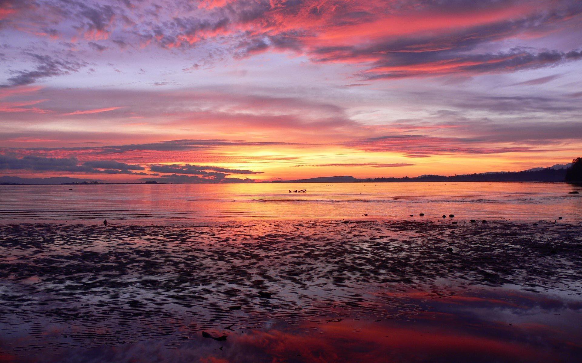 Beach Sunset Background #1