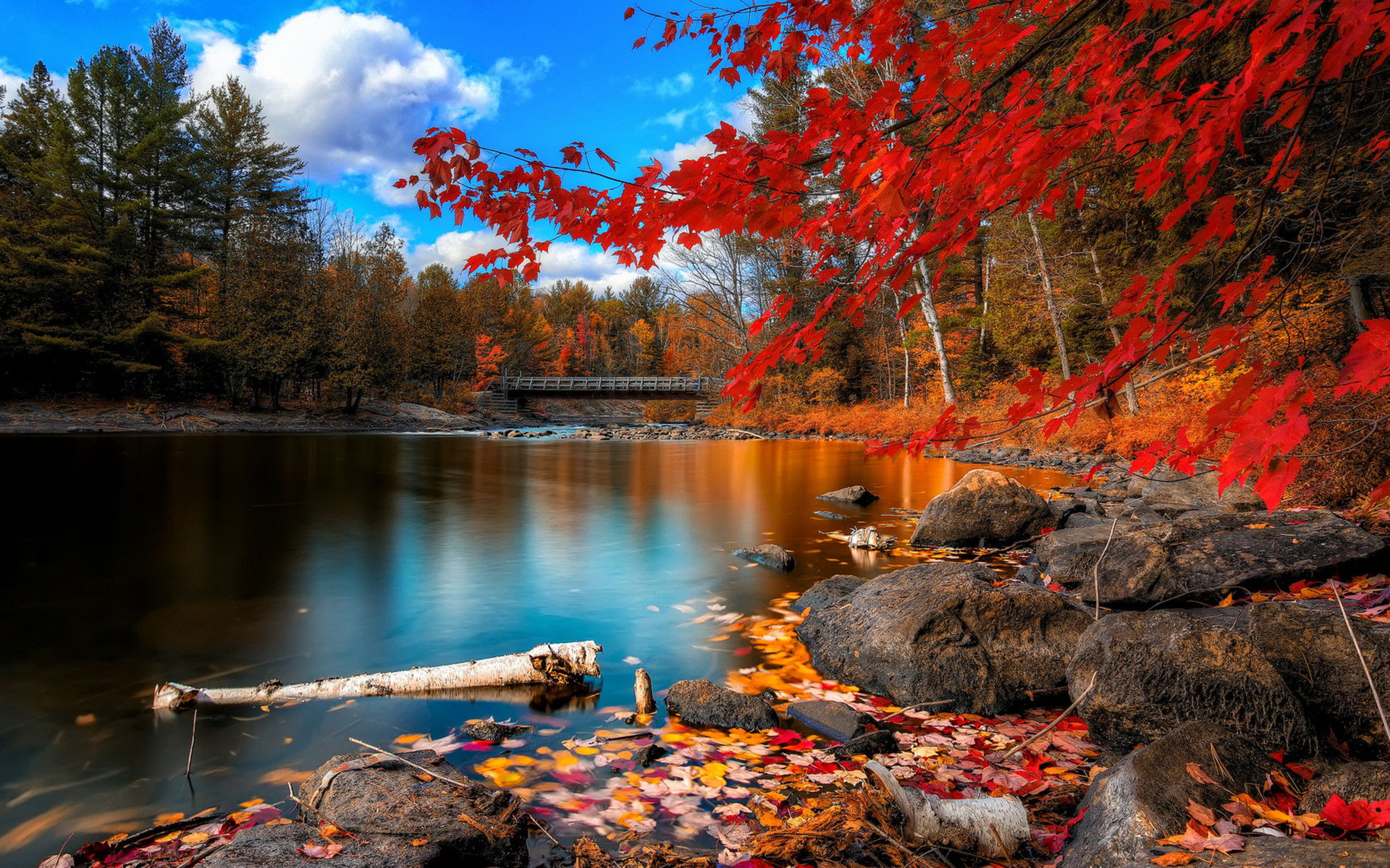 Computer outstanding backgrounds fall hd.