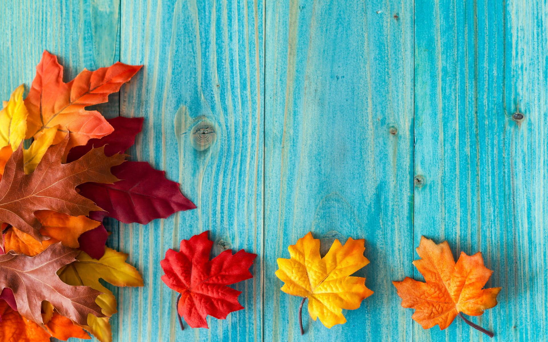 Fall Widescreen Wallpaper